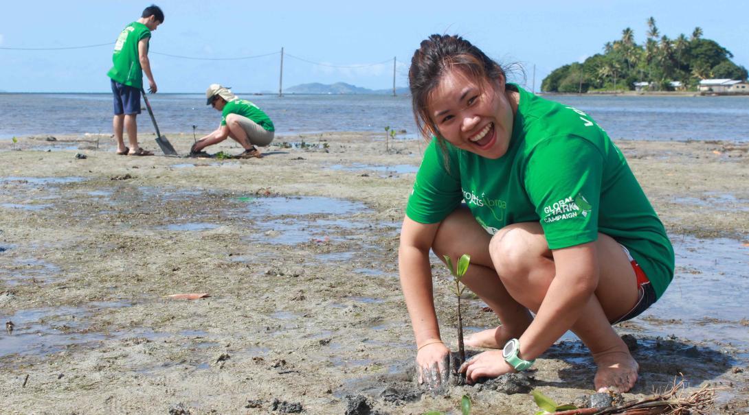 Voluntarios plantando manglares como parte de su Voluntariado de Conservación de Tiburones en Fiyi.
